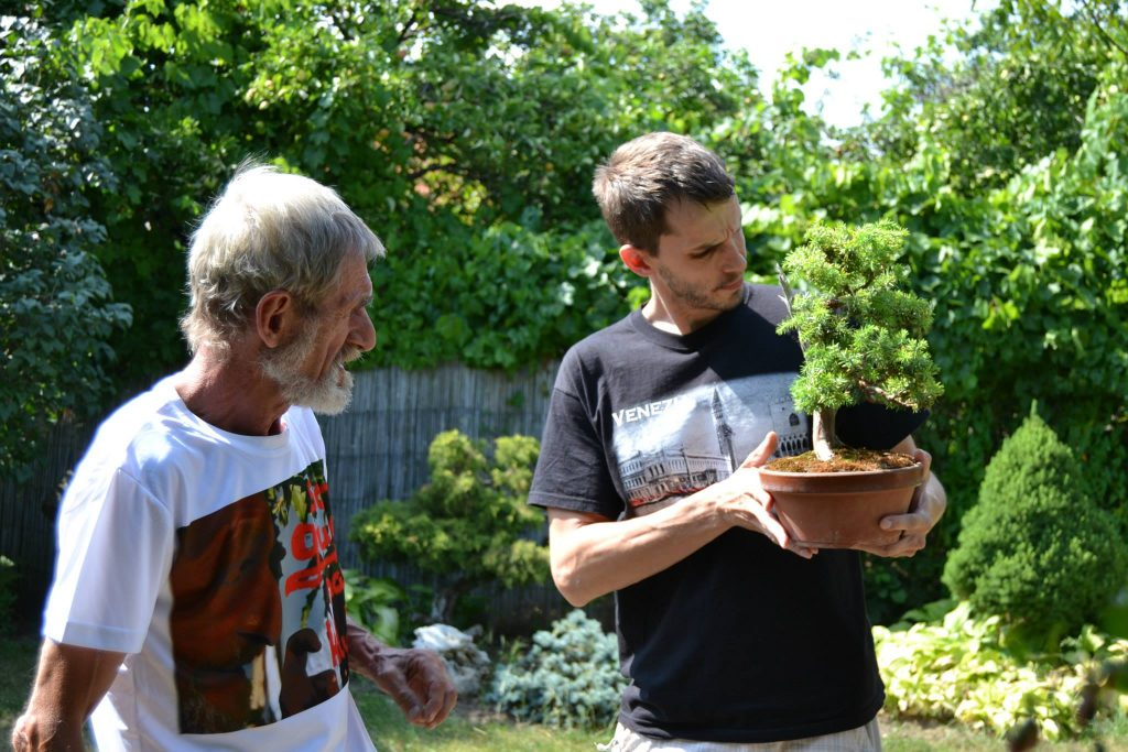 Bonsai stretko doma u Vincka 14. august 2014