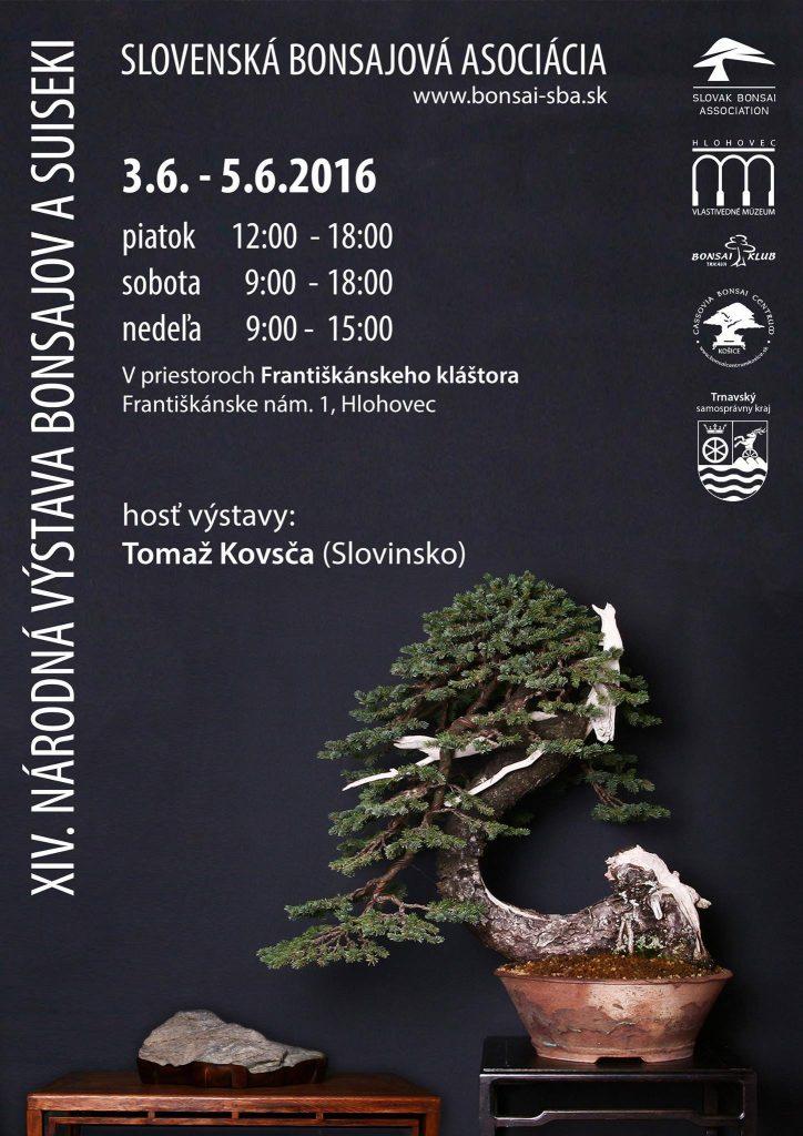 Národná výstava bonsajova suiseki 3.6 – 5.6.2016 Hlohovec