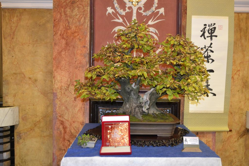 Prešov bonsai suiseki exibithion 2016