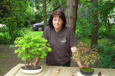 Posledný májový víkend 2010. Výstava kaktusov a bonsajov v trnavskej Kalokagatii.