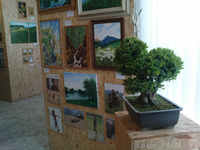 31. mája 2009, Výstava obrazov a bonsajov v Lančári.