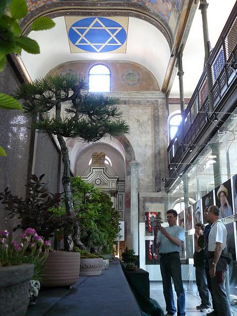 13-15. 5. 2011 sme usporiadali 6. klubovú výstavu v Max Gallery