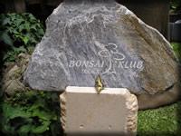 5. národná výstava bonsajov a suiseki, Trnava 2007
